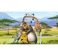 Картинка Мадагаскар №10 фото цена