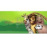 Картинка Мадагаскар №4 фото цена