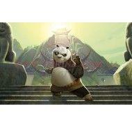 Картинка Панда Кунг-фу №6 фото цена