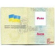 Картинка Паспорт фото цена