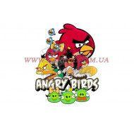 Картинка Agry Birds №8 фото цена