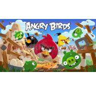 Картинка Agry Birds №7 фото цена