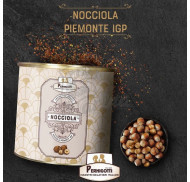 Фундучная паста из Пьемонтского фундука, натуральная 100% NOCCIOLA IGP M.G.I. Pernigotti 3,5 кг