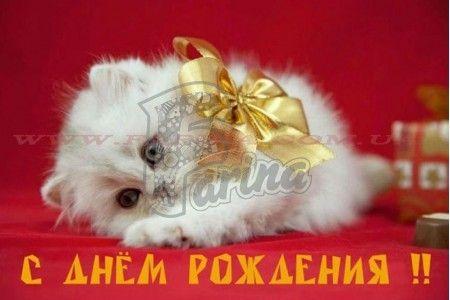 """Картинка """"С Днем Рождения"""" №1< фото цена"""