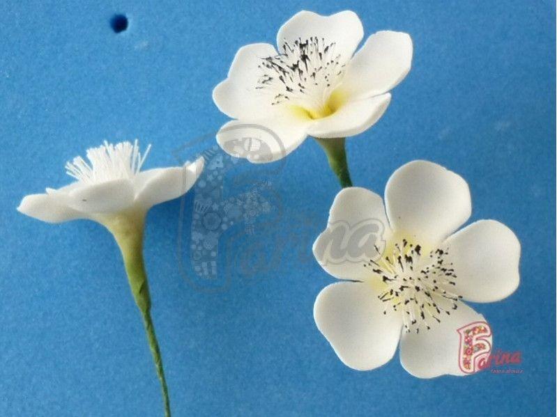 Как сделать тычинки у цветков